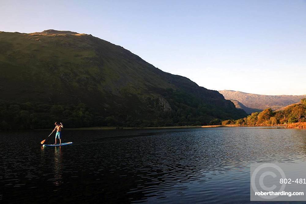 Paddle boarder on Llyn Gwynant, Snowdonia, Wales, United Kingdom, Europe