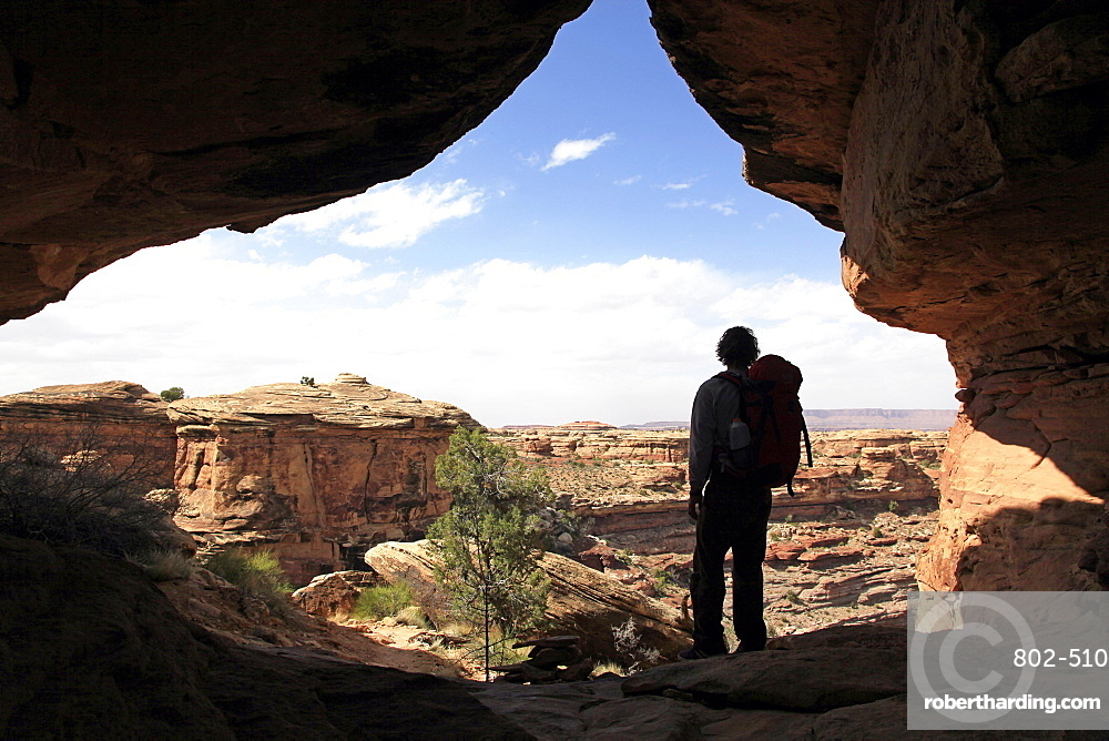 Lone hiker in Canyonlands, Utah, United States of America, North America