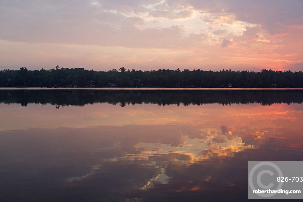 Forest by the shore of Gull Lake, during daybreak in the Muskoka region of Ontario, Canada, North America