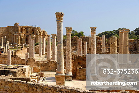 Many antique pillars Hadrians thermal baths Leptis Magna Libya