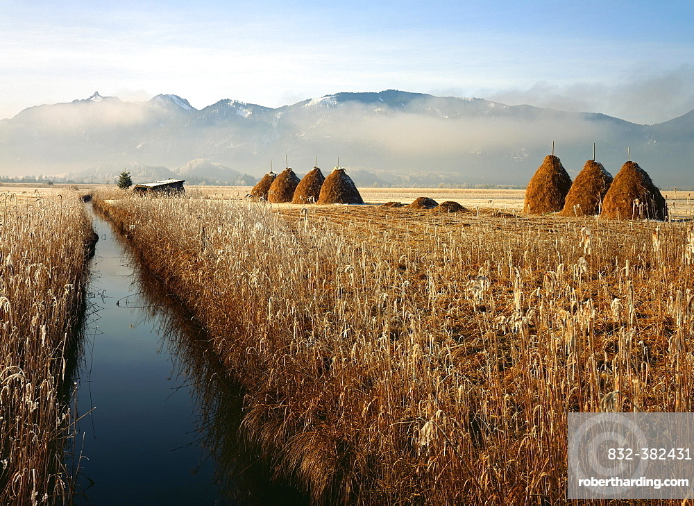 Murnau Moor, Murnauer Moos, in front of the mountains Ettaler Mandl and Laber, Upper Bavaria, Bavaria, Germany, Europe