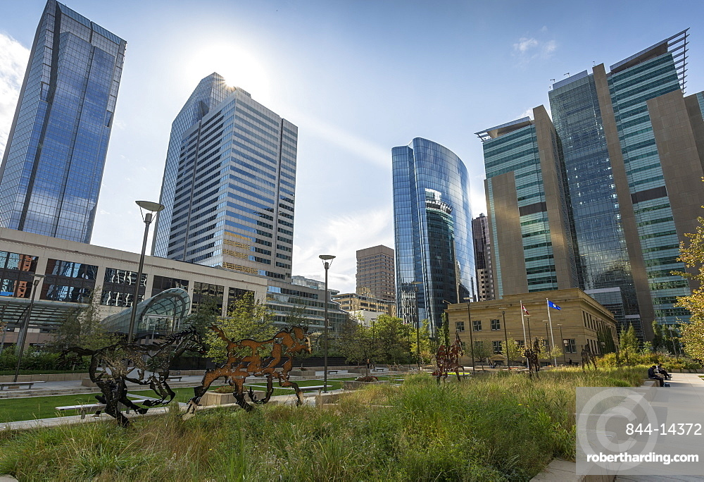 View of the Courthouse in Courthouse Park and surrounding urban office buildings, Downtown Calgary, Alberta, Canada, North America