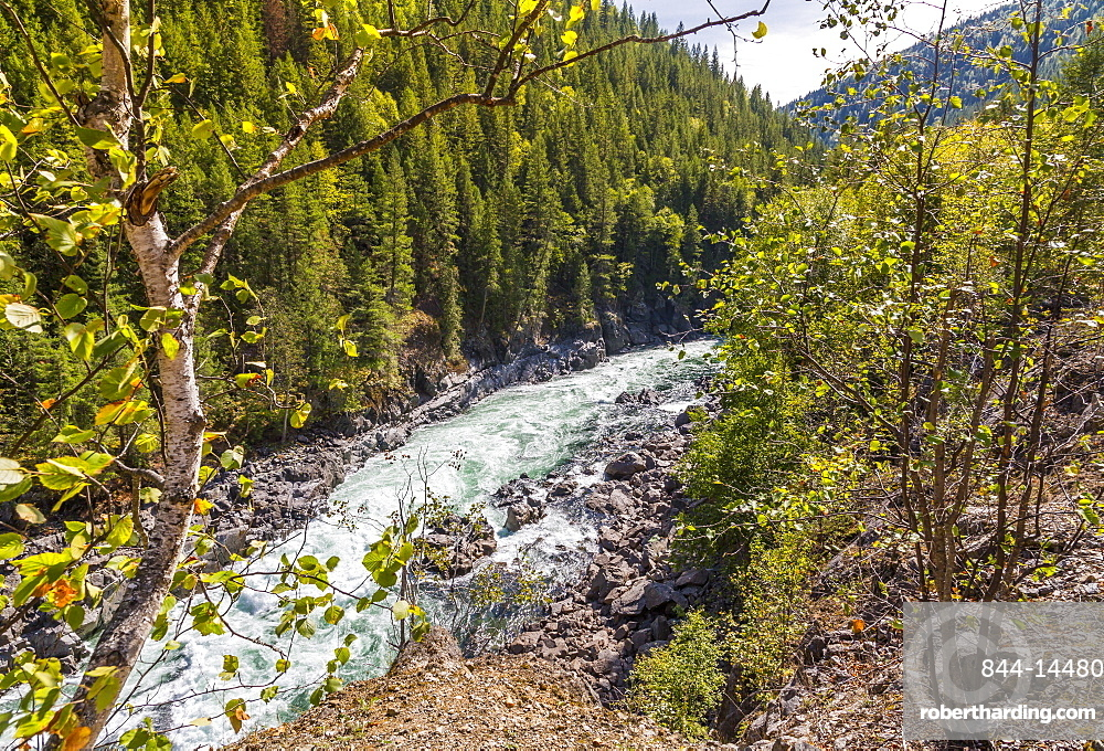View of white rapids on Clearwater River near Clearwater, British Columbia, Canada, North America