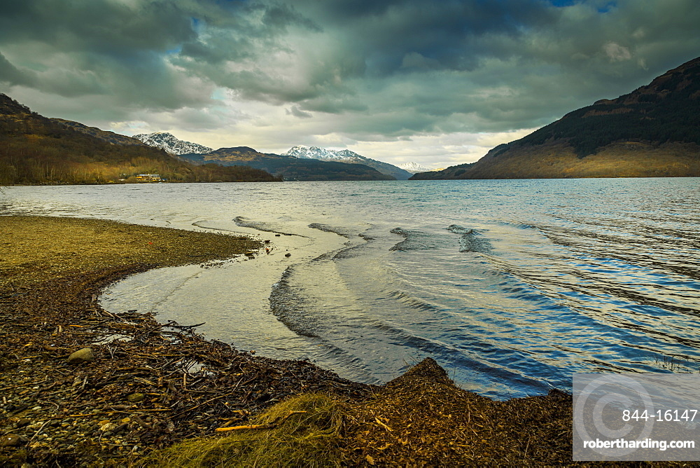 The shores of Loch Lomond in winter in the Loch Lomond and The Trossachs National Park, Stirling, Scotland, United Kingdom, Europe