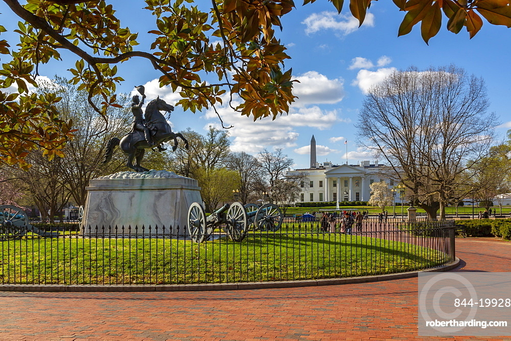 View of The White House and spring blossom in Lafayette Square, Washington DC, District of Columbia, United States of America