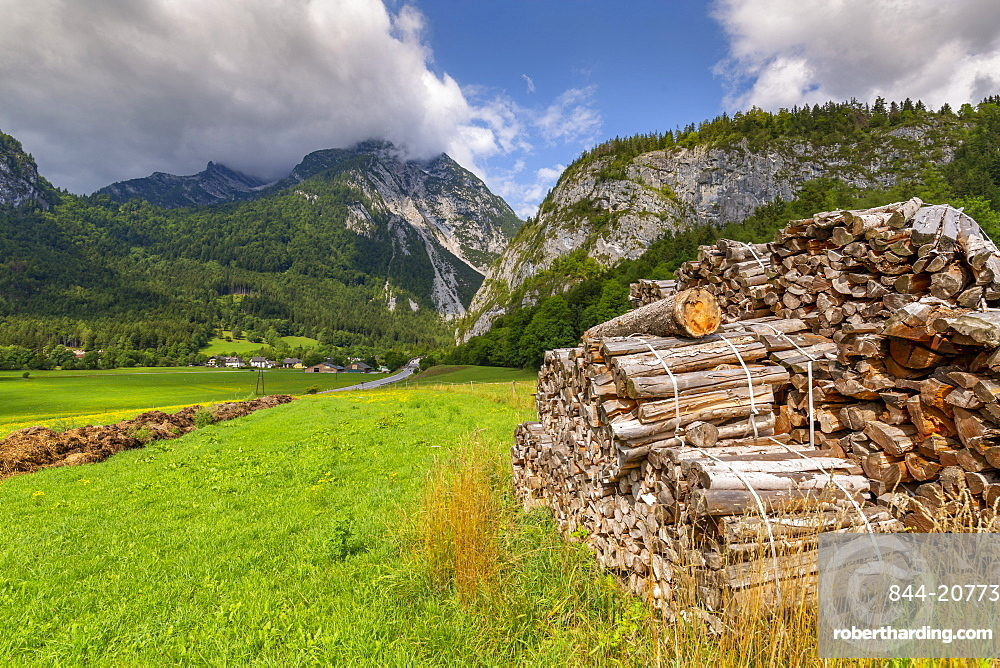 Wood stock piles and mountains, Unterburg, Styria, Tyrol, Austrian Alps, Austria. Europe