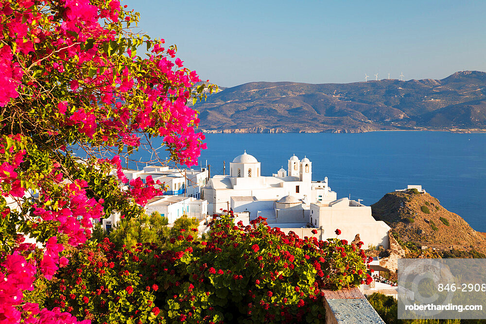White old town of Plaka and Milos Bay with colourful bougainvillea, Plaka, Milos, Cyclades, Aegean Sea, Greek Islands, Greece, Europe