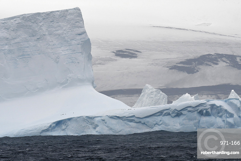 Iceberg with small number of penguins just off the coast of Bristol Island, South Sandwich Islands