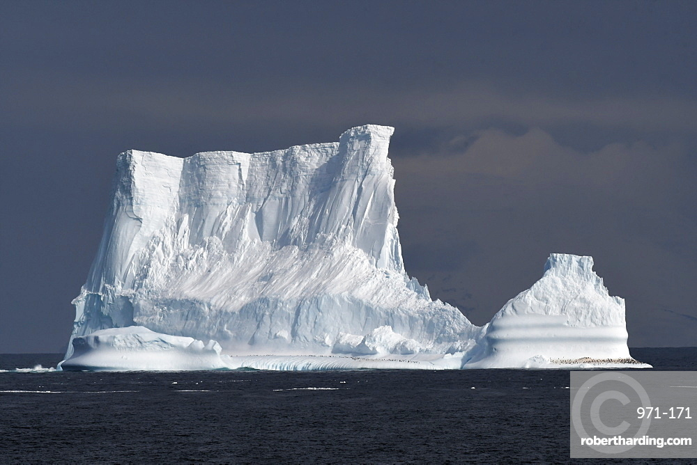 Iceberg with penguins against a blue sky, South Sandwich Islands