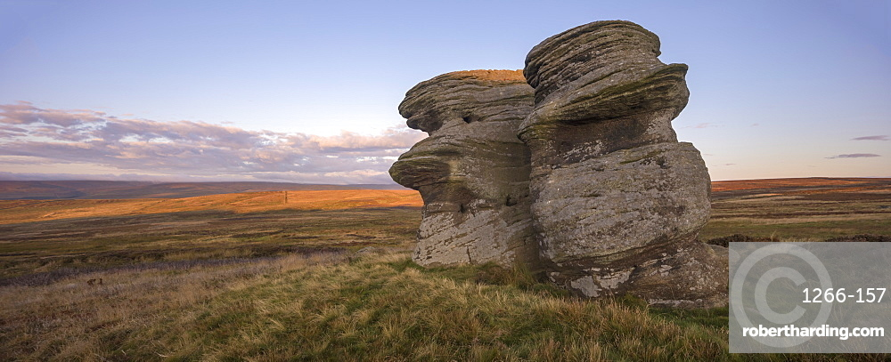 Jenny Twigg and her daughter Tibb. Gritstone rock formations on Fountains Earth Moor, Nidderdale, North Yorkshire, UK
