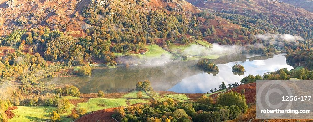 Autumn colour and early morning mist at Rydal Water, seen from Loughrigg Fell, English Lake District, Cumbria