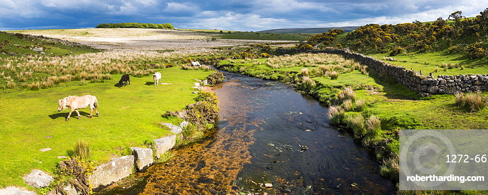 Dartmoor landscape, Devon, England, United Kingdom, Europe
