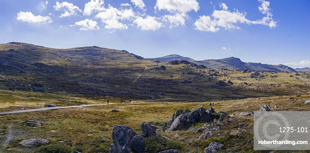 Hiking trail towards Mount Kosciuszko, the highest peak of Australia, New South Wales, Australia, Pacific