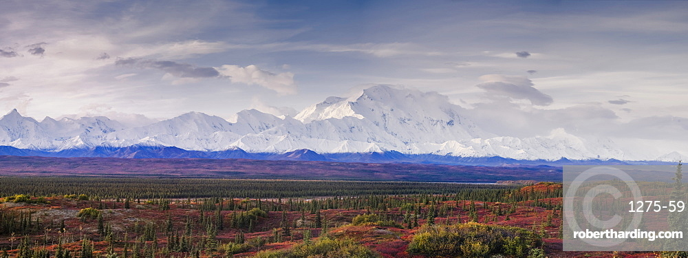 Panoramic landscape of the Denali Mountain (Mount McKinley), Denali National Park, Alaska, United States of america, North America