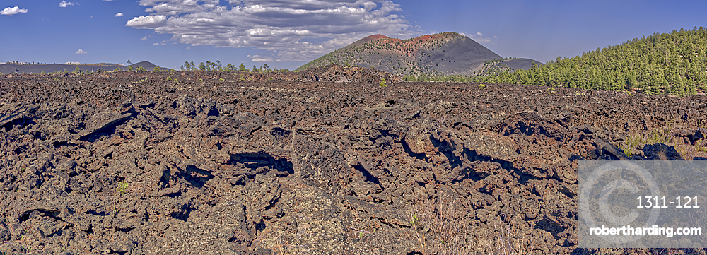 Panorama of the western Bonito Lava Field at Sunset Crater Volcano, Arizona, United States of America, North America