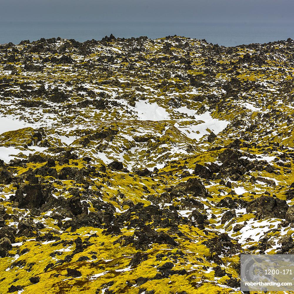 Lava field, Snaefellsnes, Iceland.