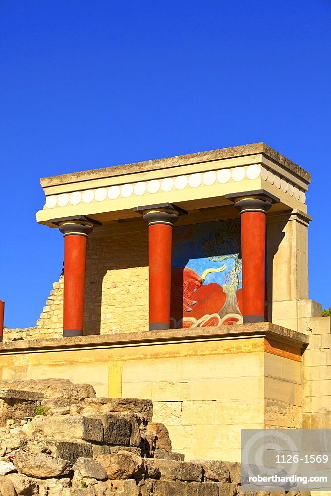 Charging Bull and Olive Tree Fresco, The Minoan Palace of Knossos, Knossos, Heraklion, Crete, Greek Islands, Greece, Europe
