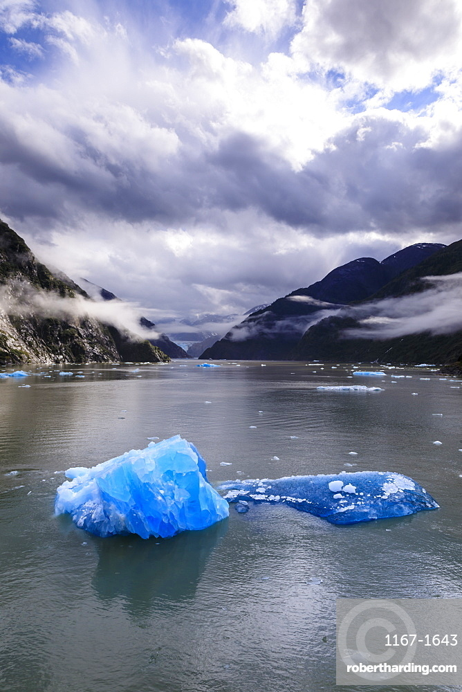 Spectacular Tracy Arm Fjord, brilliant blue icebergs and backlit clearing mist, mountains and South Sawyer Glacier, Alaska, United States of America, North America