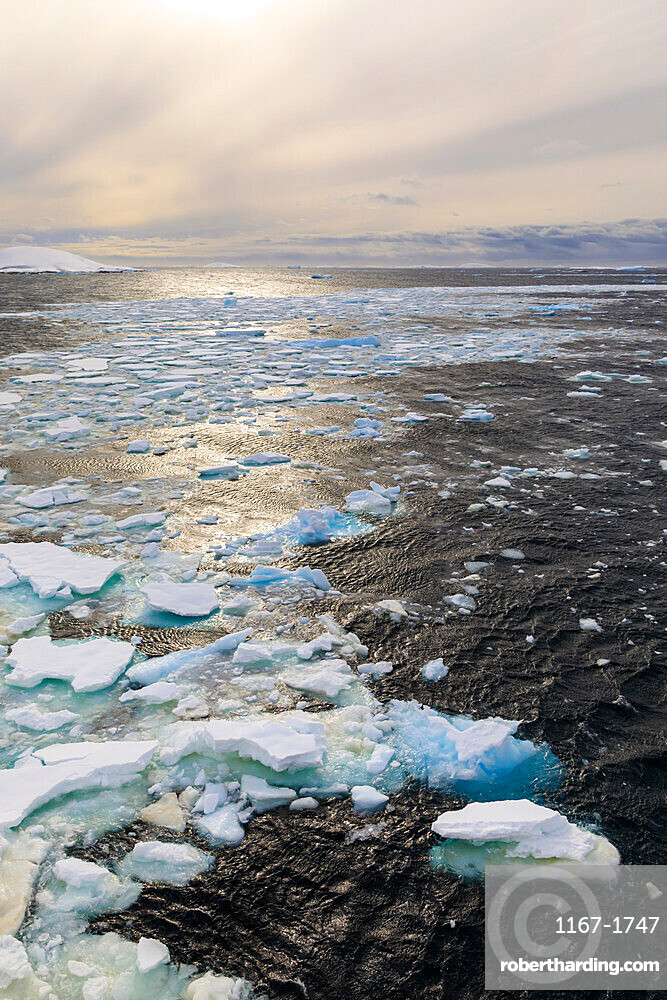 Ripples and sea ice, evening light, off Booth Island, entrance to Lemaire Channel, Antarctic Peninsula, Antarctica, Polar Regions