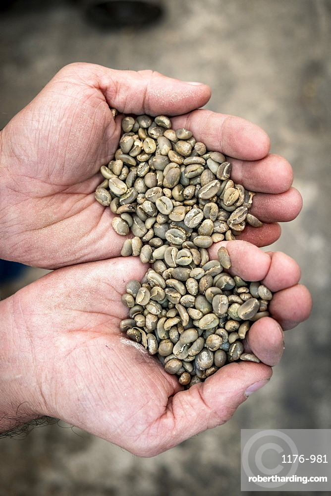South America, Brazil, Colombia, raw coffee beans