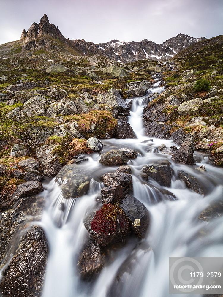 Flowing water of a creek, Alp Da Cavloc, Maloja Pass, Bregaglia Valley, canton of Graubünden, Engadine,Switzerland