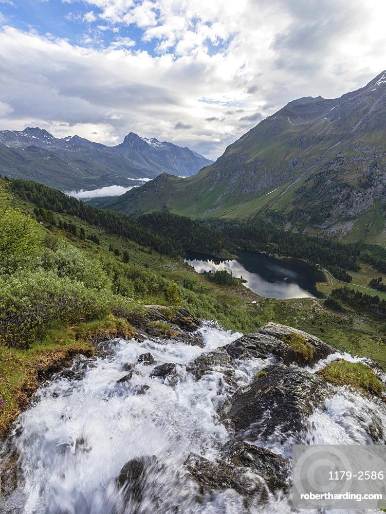 Flowing water of a creek around Lake Cavloc, Maloja Pass, Bregaglia Valley, Engadine, Canton of Graubunden, Switzerland, Europe