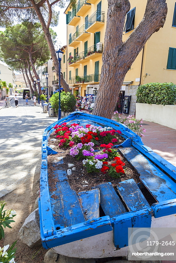 Wood boat decorated with flowers, Marina Di Campo, Elba Island, Livorno Province, Tuscany, Italy, Europe