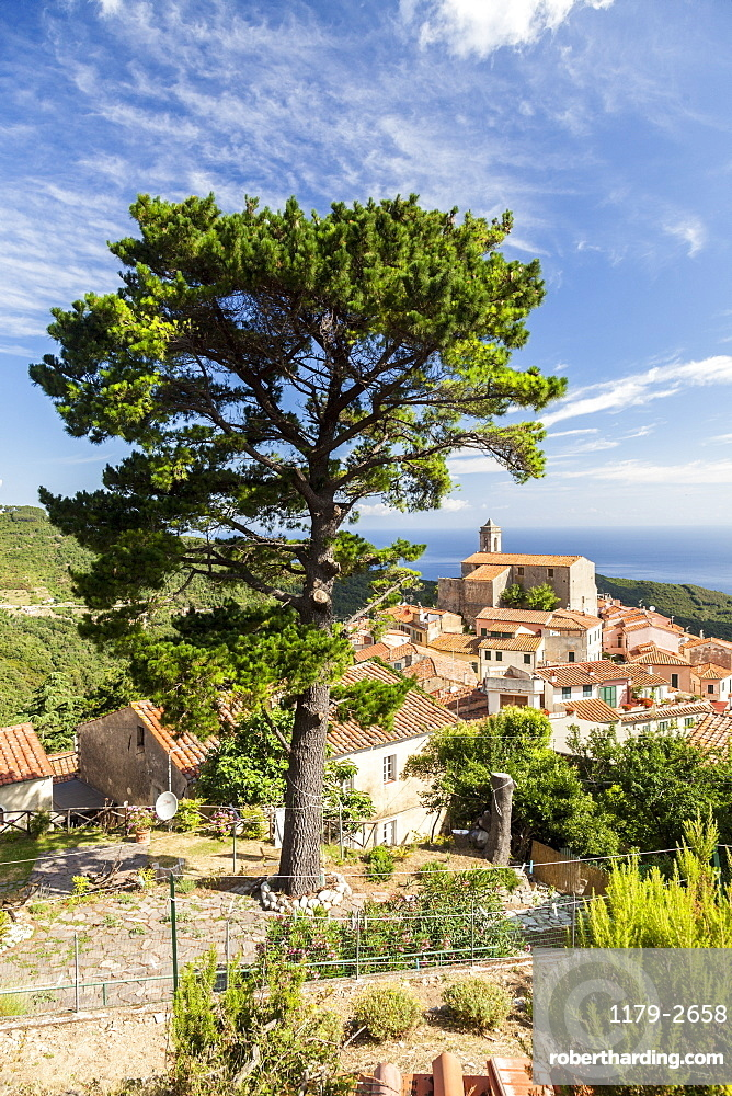 Village of Poggio on the hills of Monte Capanne, Marciana, Elba Island, Livorno Province, Tuscany, Italy, Europe
