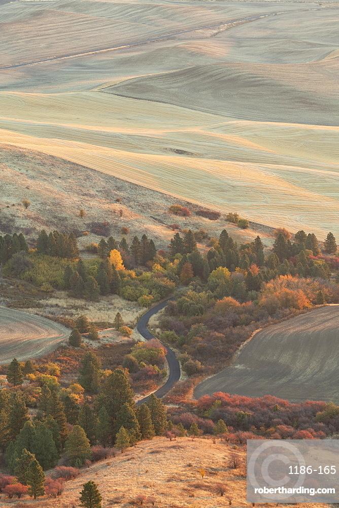 Farmland in the Palouse, Palouse, Washington State, United States of America, North America