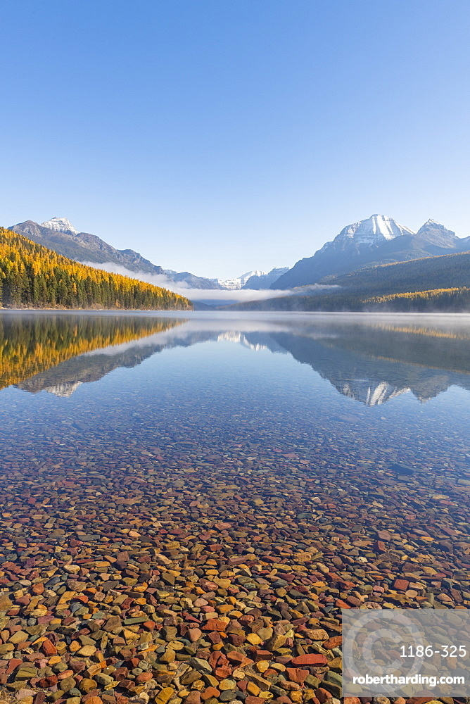 Bowman Lake, Glacier National Park, Montana, USA