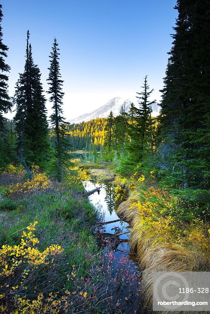 Reflection Lake, Mount Rainier NP, Washington, United States of America