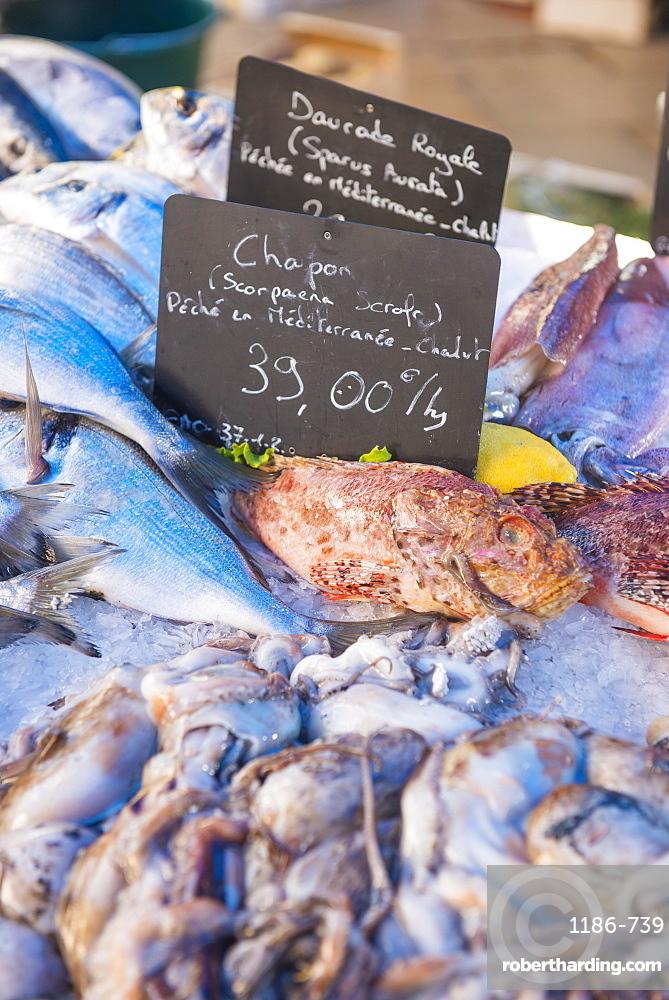 Fish market in Aix en Provence, Bouches du Rhone France