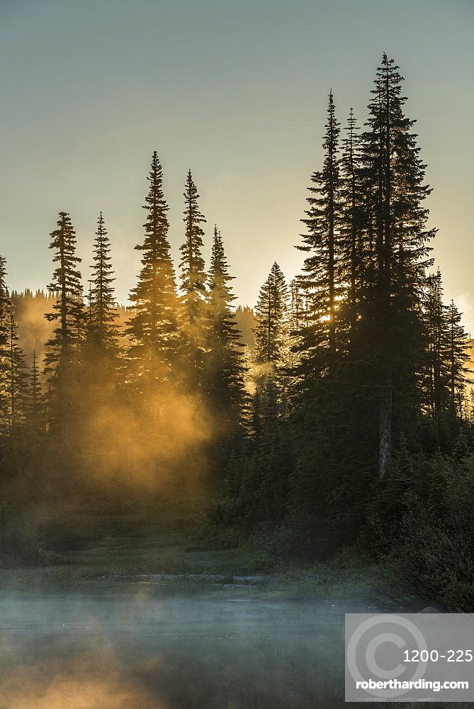 Morning sunlight and mist, Reflection Lake, Mount Ranier national Park, Washington, United States.