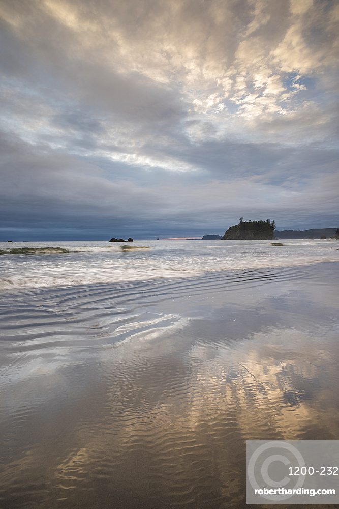 First Beach at dawn, Olympic National Park, UNESCO World Heritage Site, Washington State, United States of America, North America