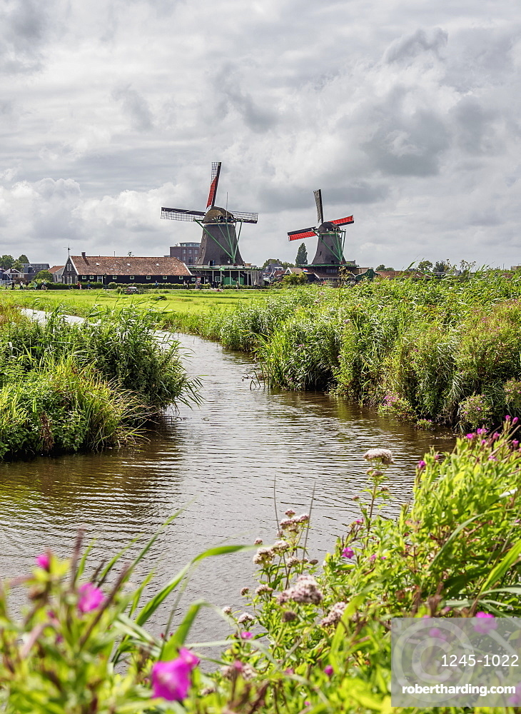 Windmills in Zaanse Schans, Zaandam, North Holland, The Netherlands, Europe