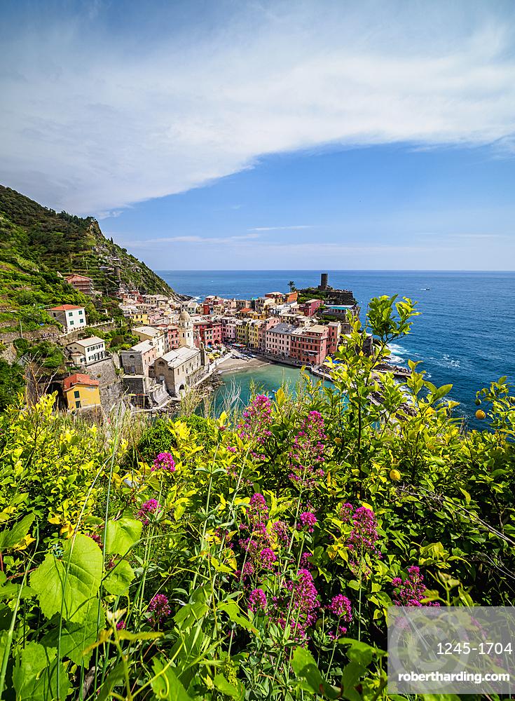 Vernazza Village, elevated view, Cinque Terre, UNESCO World Heritage Site, Liguria, Italy