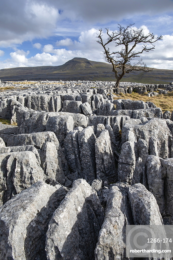 View towards Ingleborough Hill (One of the famous Yorkshire 'Three Peaks') from Twisleton Scar, above Ingleton, North Yorkshire