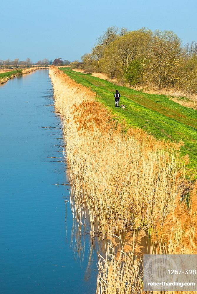 Burwell Lode at Wicken Fen, Cambridgeshire, East Anglia, England, UK.
