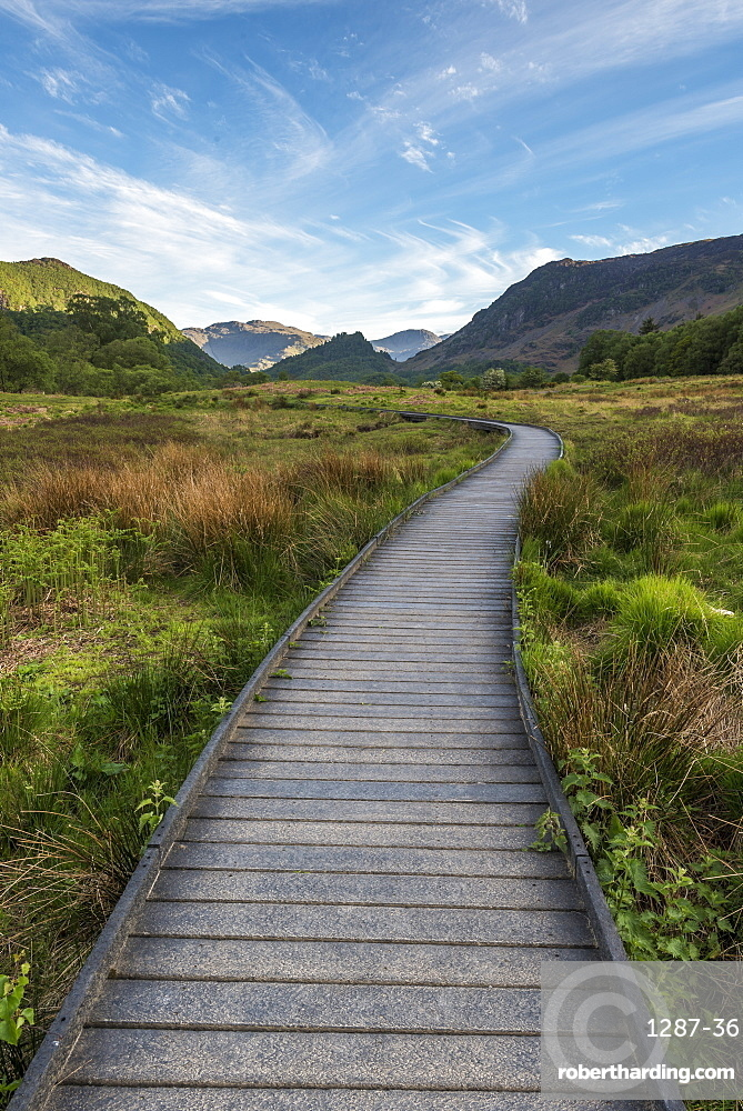 A raised path in the Borrowdale Valley with Castle Crag the prominent hill in the centre of image, Lake District National Park, UNESCO World Heritage Site, Cumbria, England, United Kingdom, Europe