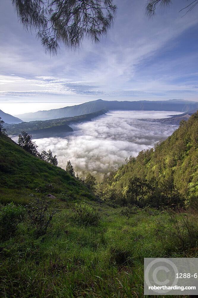 Morning view at Mount Bromo, East Java, Indonesia, Southeast Asia, Asia