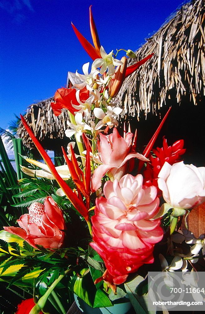 French Polynesia, Tropical Flowers