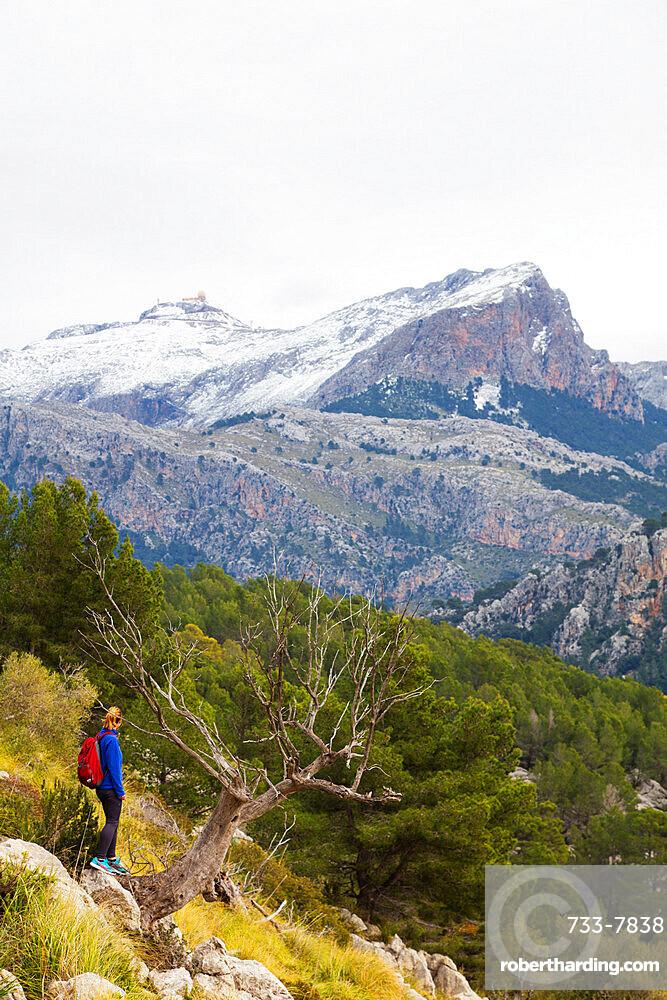 Serra de Tramuntura, hiker on a trail above Soller, Majorca, Balearic Islands, Spain, Mediterranean, Europe