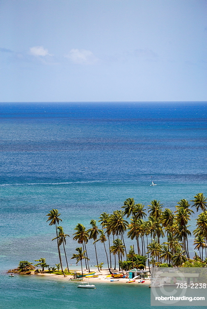Tall palms on the small beach at Marigot Bay, St. Lucia, Windward Islands, West Indies Caribbean, Central America