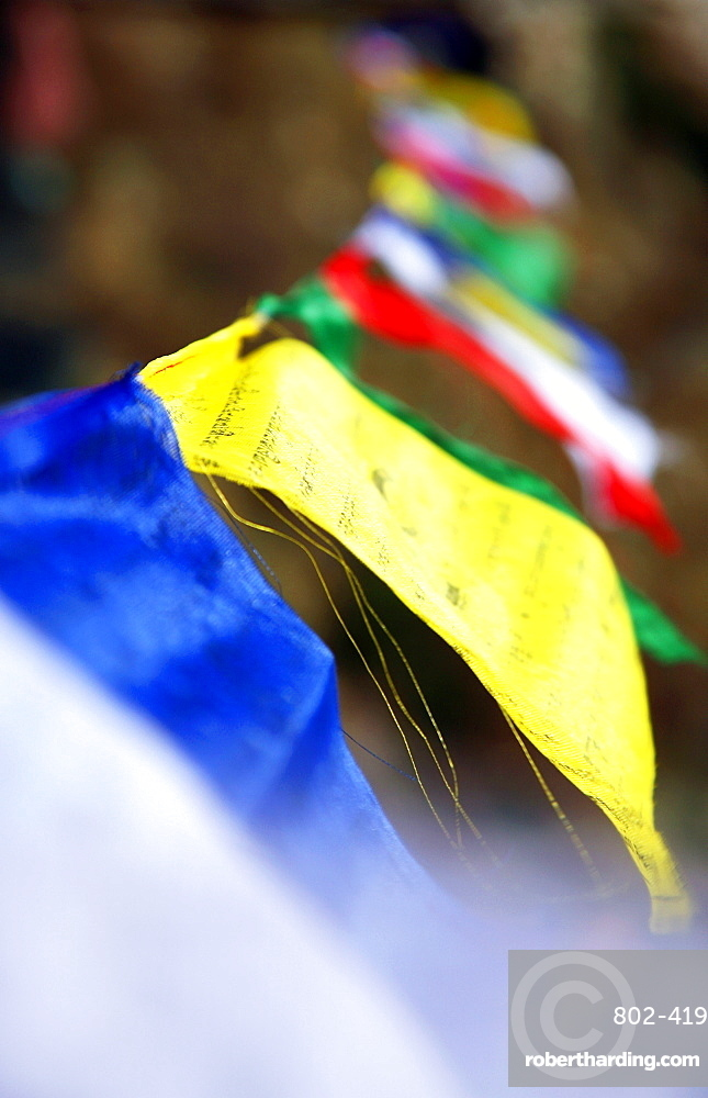 Buddhist prayer flags, Khumbu, Nepal, Asia