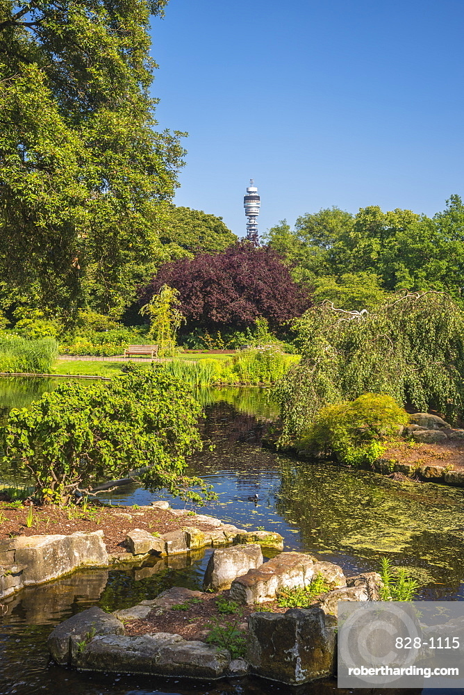 Regent's Park, BT Tower in distance, London, England, United Kingdom, Europe