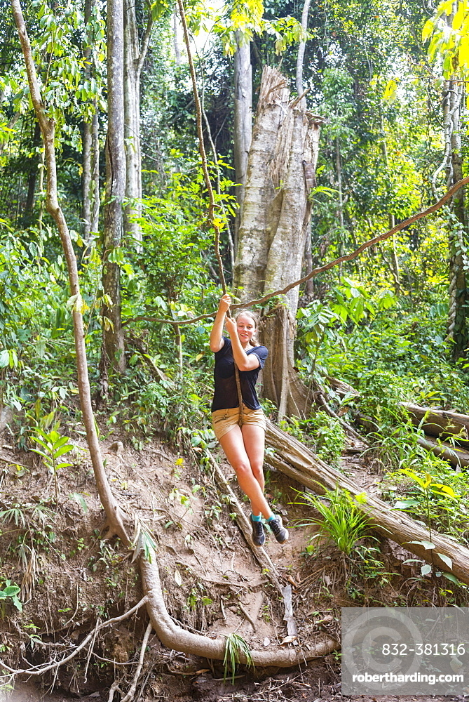 Young woman swinging on a vine in the jungle, tropical rain forest, Taman Negara, Malaysia, Asia