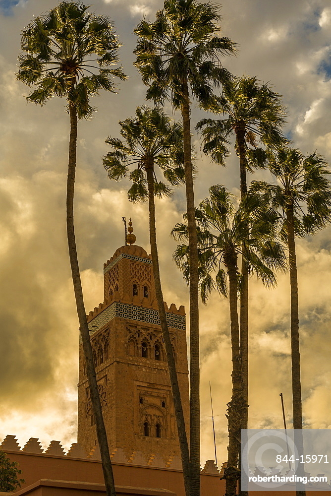View of Koutoubia Mosque and palm trees at sunset, UNESCO World Heritage Site, Marrakesh (Marrakech), Morocco, North Africa, Africa