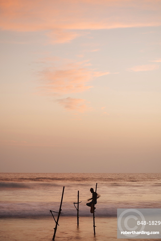 Stilt Fishermen at dusk, Weligama, South Coast, Sri Lanka, Asia