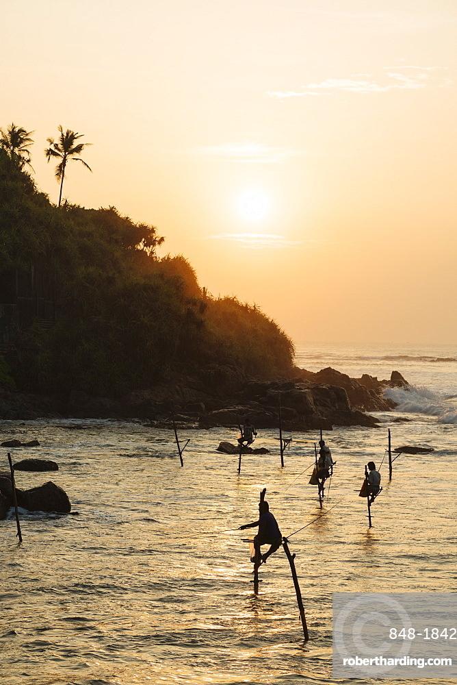 Stilt Fishermen at dawn, Weligama, South Coast, Sri Lanka, Asia