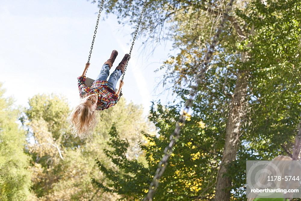 Commit swing swinging tree delightful